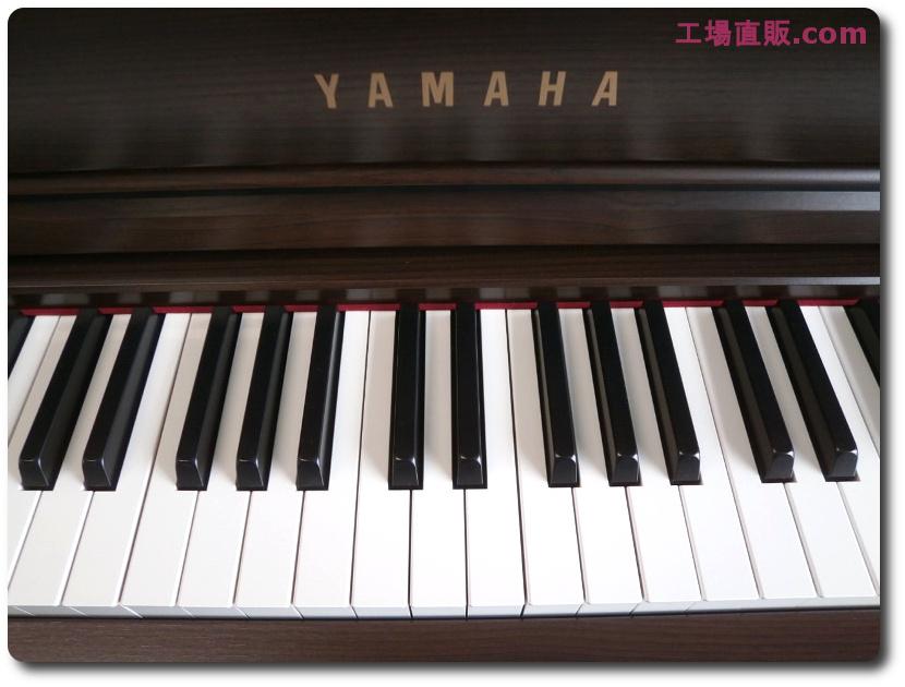 http://www.chuko-chokuhan.com/SCLP5450%20%23JCVP01078%20%286%29.JPG